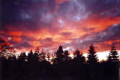 skyScotland